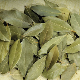 Bay Leaves, Laurel, Spices