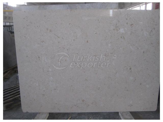 Shell Beige Limestone Slab