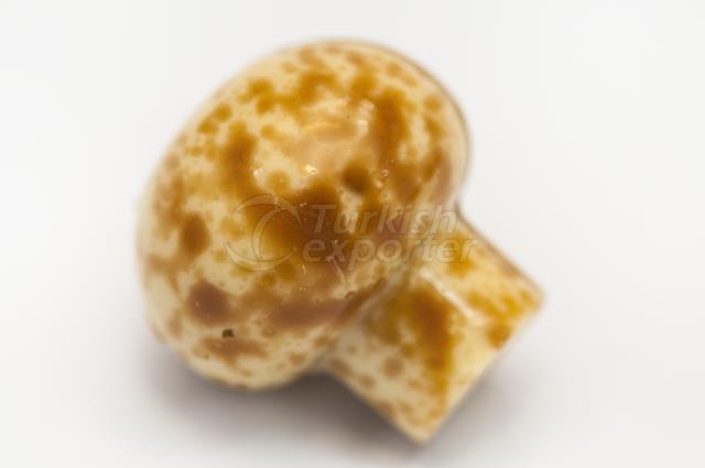 Special Mushroom Chocolate