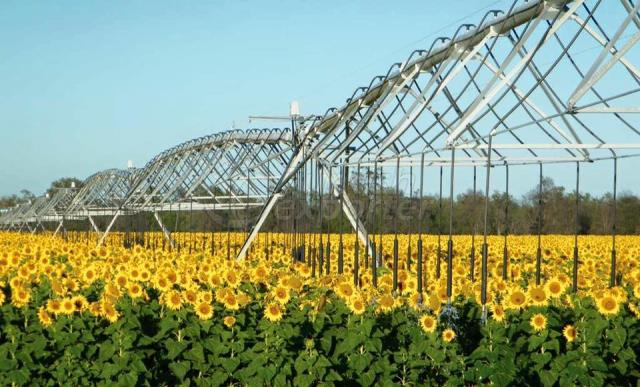 lateral irrigation pivot