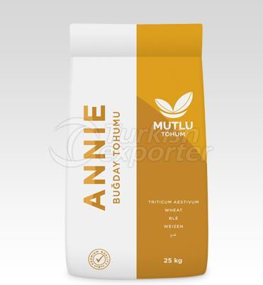 Wheat Seed - Annie