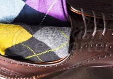 Men's Micro Socks