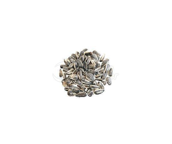 Dakota Sunflower Seeds